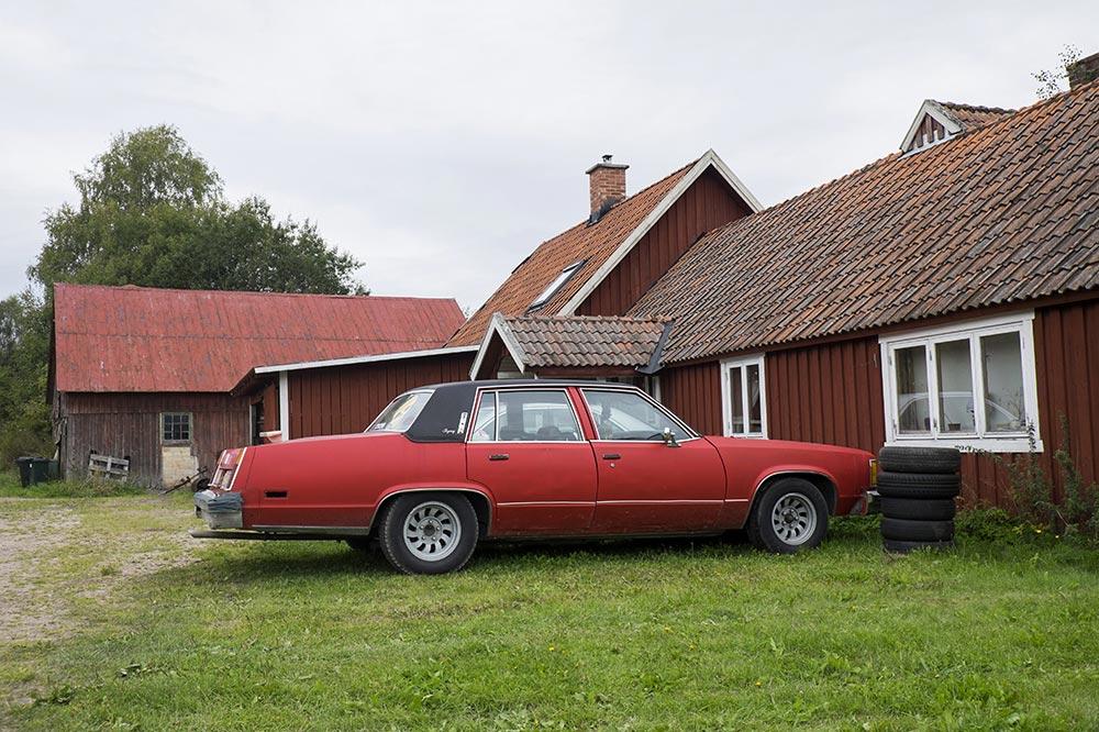 cars015