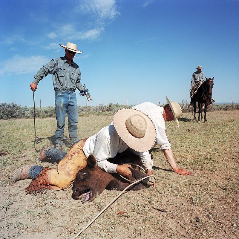 cowboys012