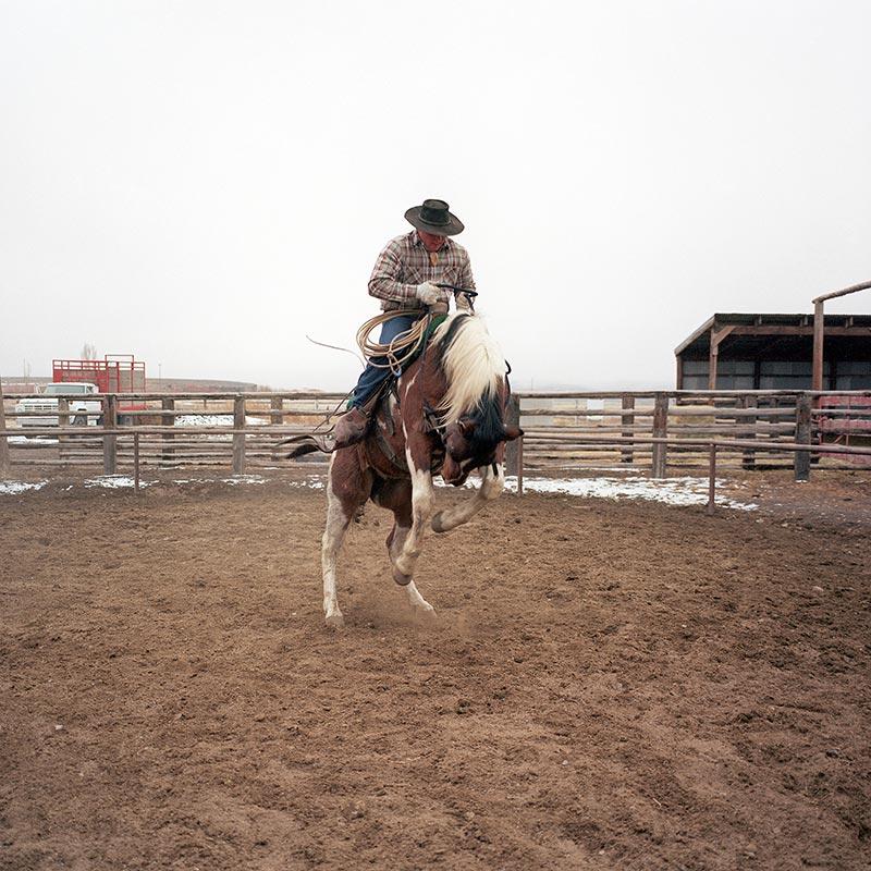 cowboys015