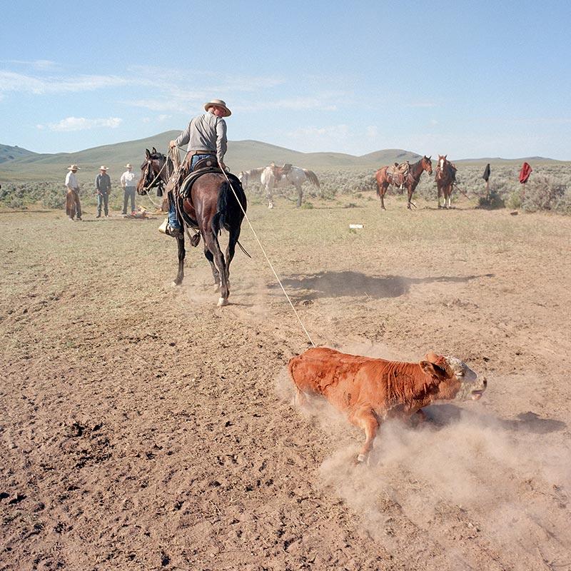cowboys027