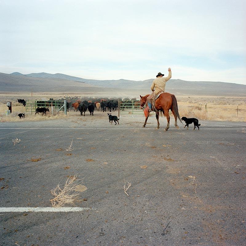 cowboys044